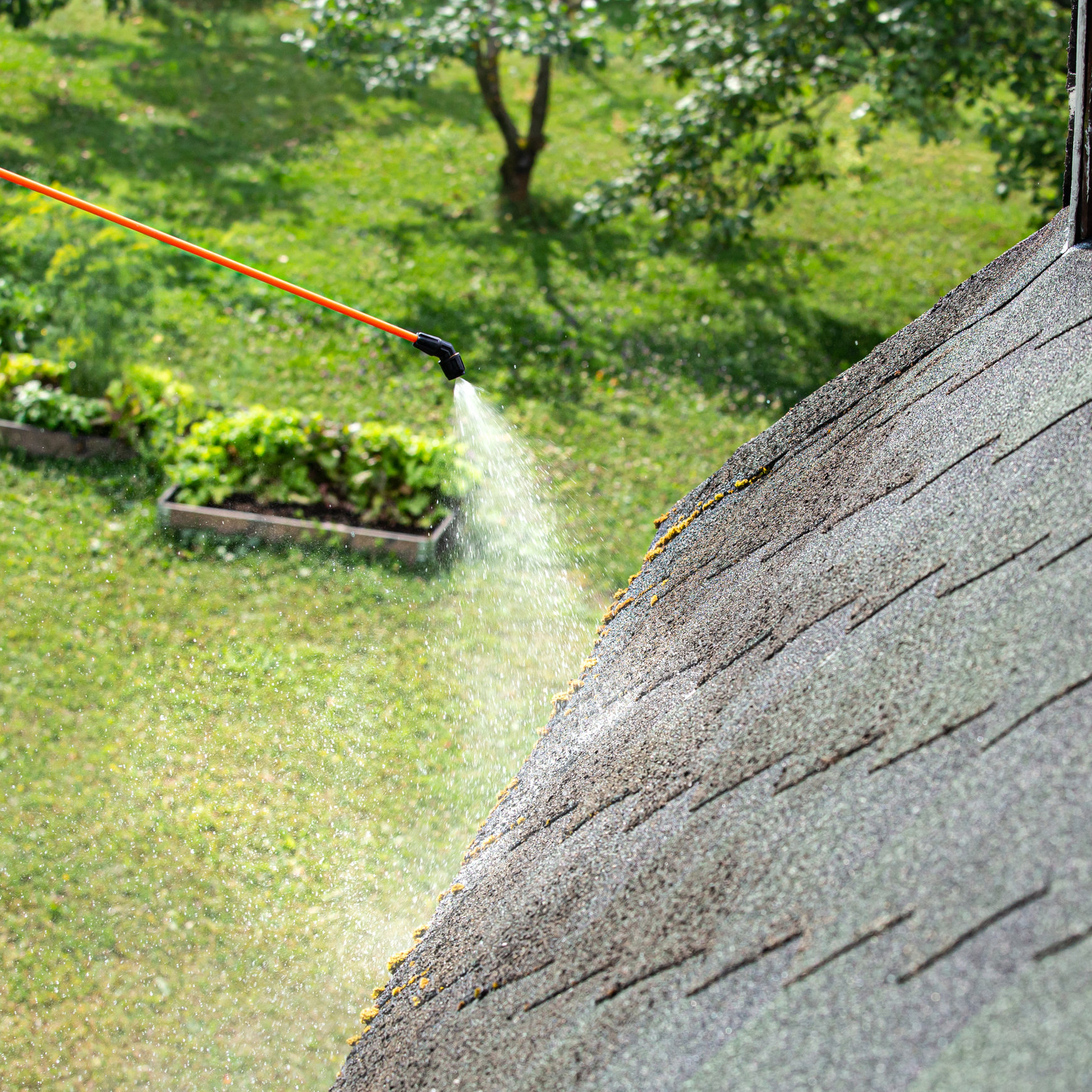 Cleaning moss off a roof