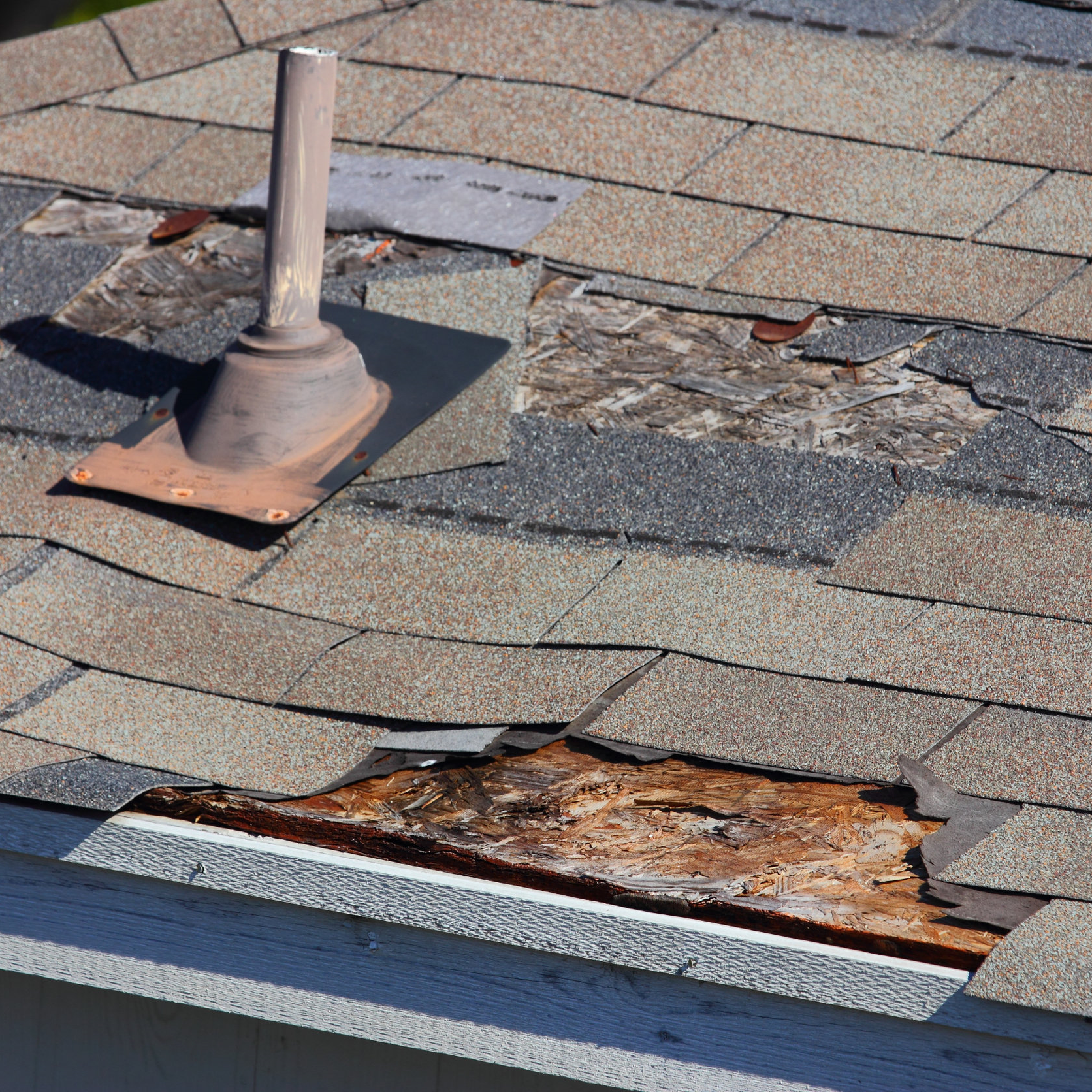 Blown-off roof shingles