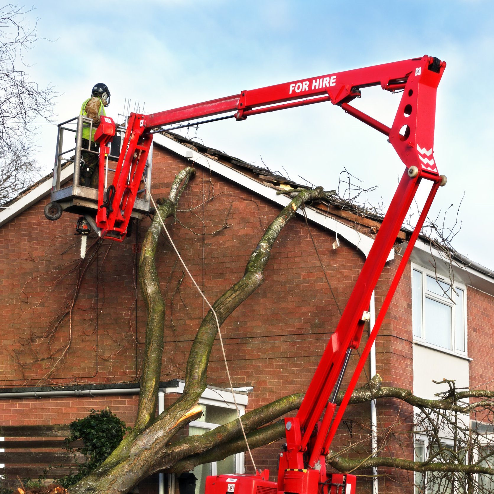 Roofer removing branches from a residential apartment